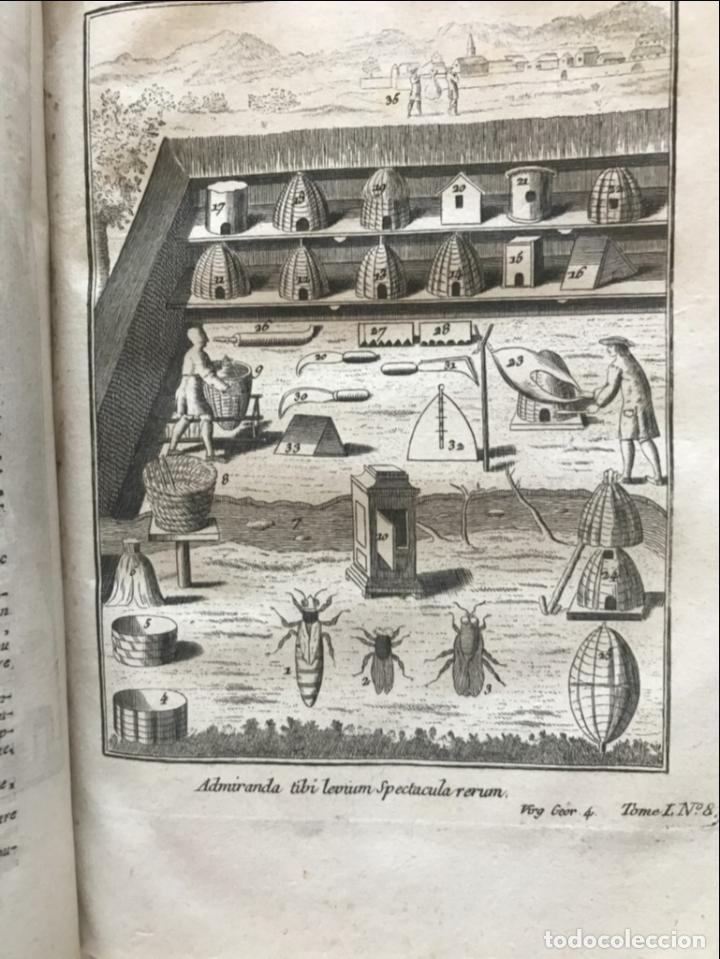 Libros antiguos: La nouvelle Maison rustique..., 2 tomos (IyII), 1790. L. Liger. Posee 41grabados y figuras - Foto 16 - 198399371