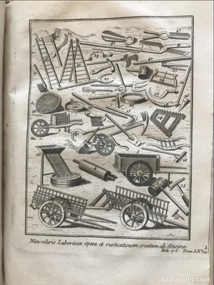 Libros antiguos: La nouvelle Maison rustique..., 2 tomos (IyII), 1790. L. Liger. Posee 41grabados y figuras - Foto 21 - 198399371