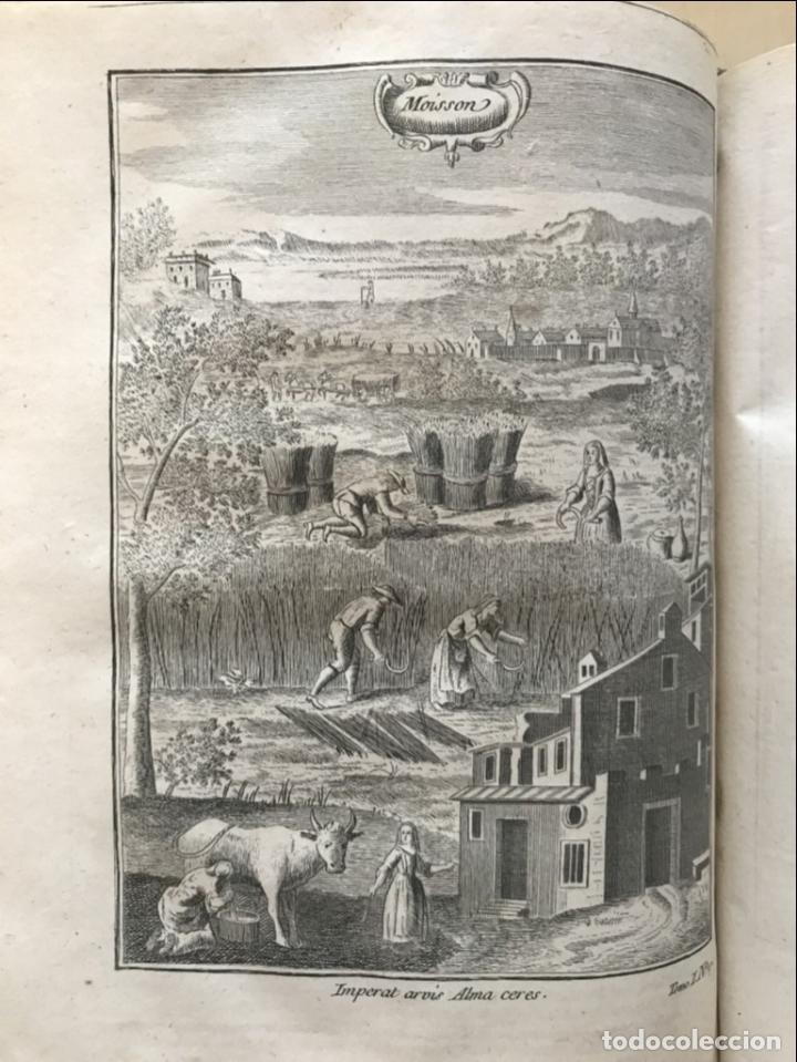 Libros antiguos: La nouvelle Maison rustique..., 2 tomos (IyII), 1790. L. Liger. Posee 41grabados y figuras - Foto 23 - 198399371