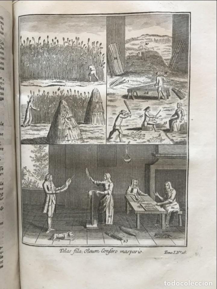 Libros antiguos: La nouvelle Maison rustique..., 2 tomos (IyII), 1790. L. Liger. Posee 41grabados y figuras - Foto 25 - 198399371