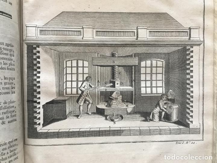 Libros antiguos: La nouvelle Maison rustique..., 2 tomos (IyII), 1790. L. Liger. Posee 41grabados y figuras - Foto 27 - 198399371