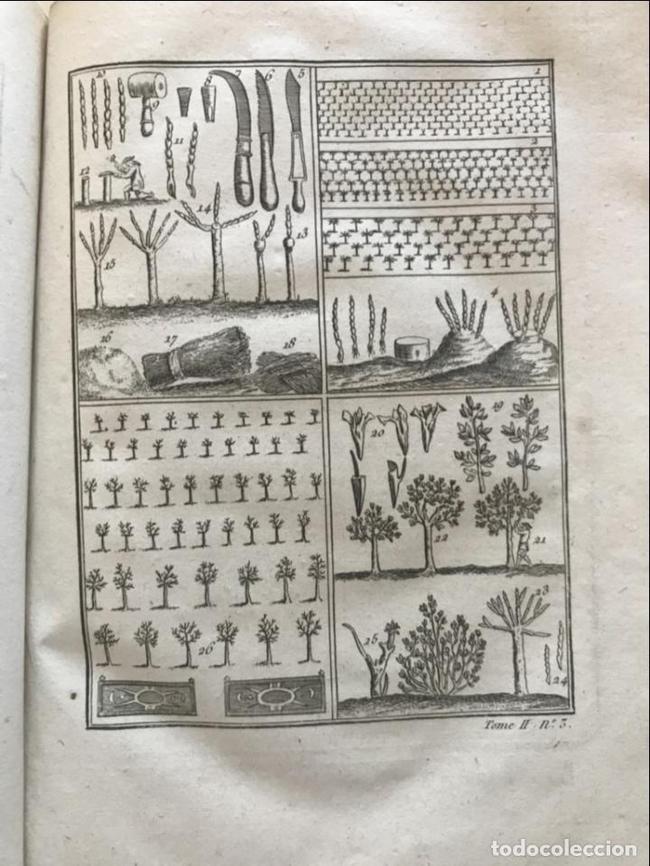 Libros antiguos: La nouvelle Maison rustique..., 2 tomos (IyII), 1790. L. Liger. Posee 41grabados y figuras - Foto 38 - 198399371