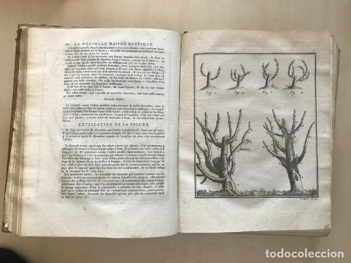Libros antiguos: La nouvelle Maison rustique..., 2 tomos (IyII), 1790. L. Liger. Posee 41grabados y figuras - Foto 39 - 198399371