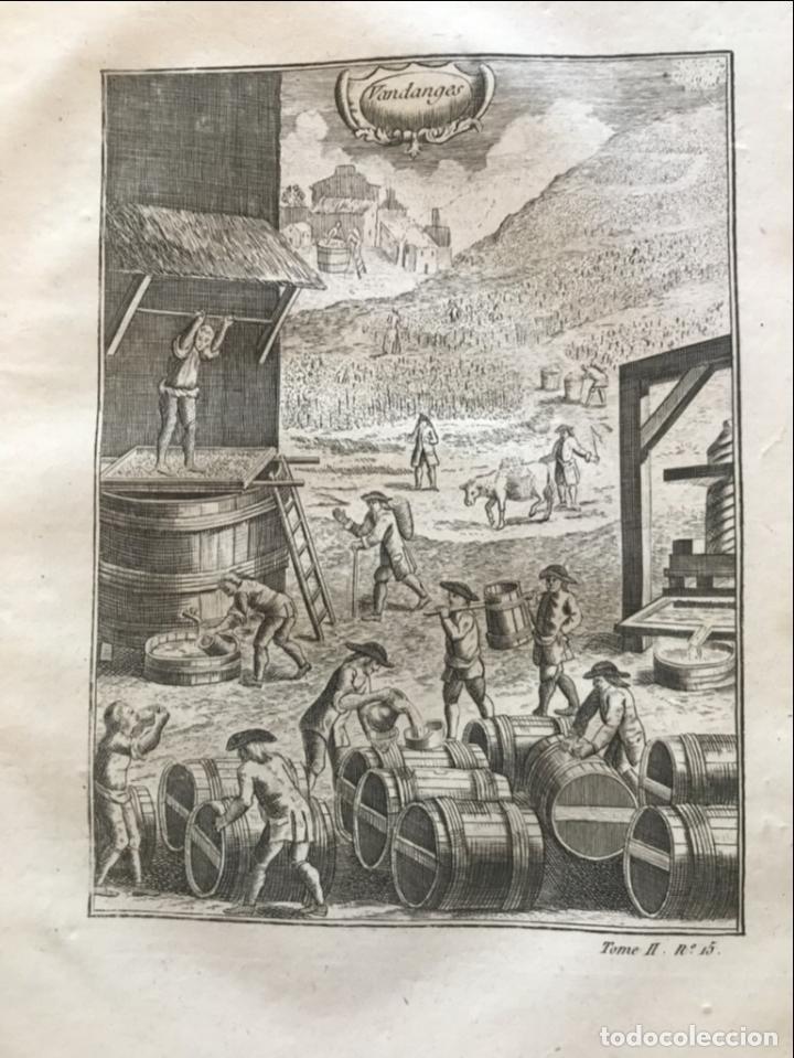 Libros antiguos: La nouvelle Maison rustique..., 2 tomos (IyII), 1790. L. Liger. Posee 41grabados y figuras - Foto 49 - 198399371