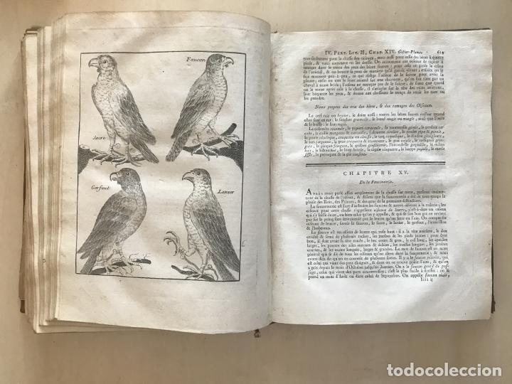 Libros antiguos: La nouvelle Maison rustique..., 2 tomos (IyII), 1790. L. Liger. Posee 41grabados y figuras - Foto 54 - 198399371