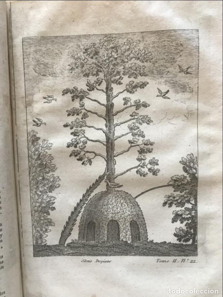 Libros antiguos: La nouvelle Maison rustique..., 2 tomos (IyII), 1790. L. Liger. Posee 41grabados y figuras - Foto 57 - 198399371