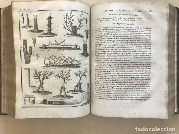 Libros antiguos: LA NOUVELLE MAISON RUSTIQUE ..Tomo II, 1798. J-F- Bastien. Posee 18 grabados. - Foto 10 - 198405088