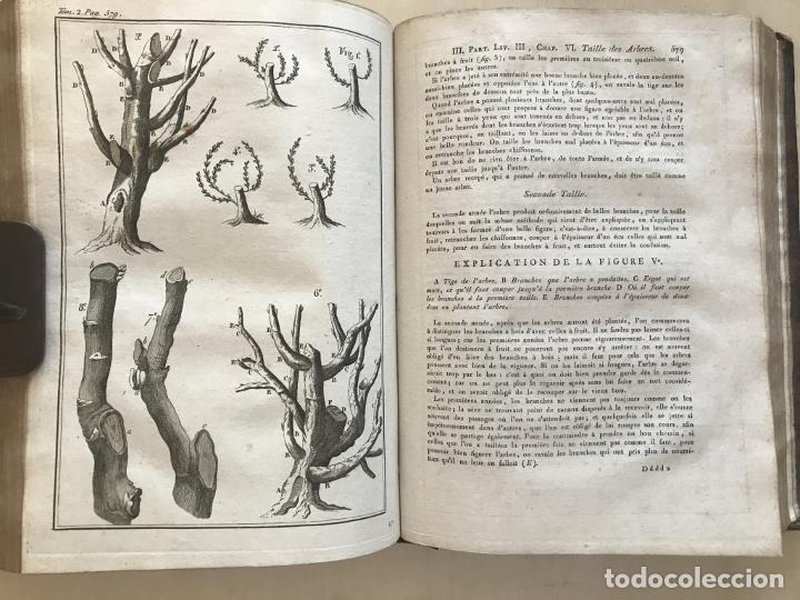 Libros antiguos: LA NOUVELLE MAISON RUSTIQUE ..Tomo II, 1798. J-F- Bastien. Posee 18 grabados. - Foto 11 - 198405088
