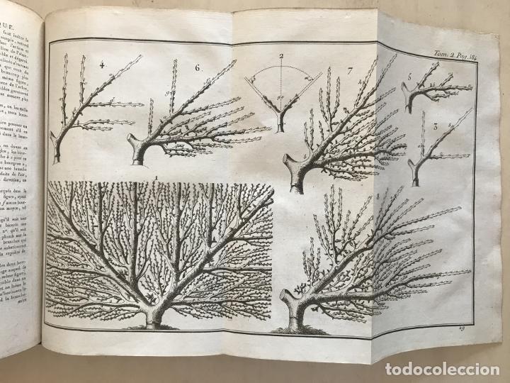Libros antiguos: LA NOUVELLE MAISON RUSTIQUE ..Tomo II, 1798. J-F- Bastien. Posee 18 grabados. - Foto 13 - 198405088