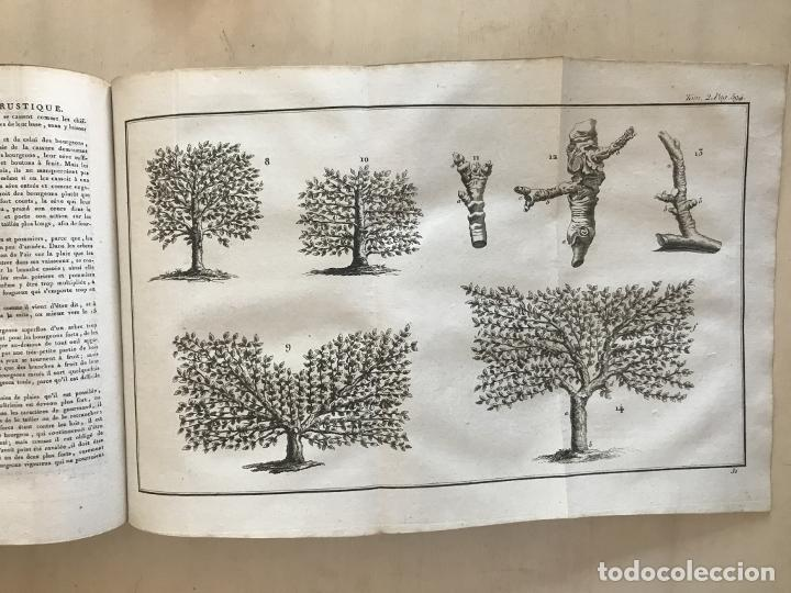 Libros antiguos: LA NOUVELLE MAISON RUSTIQUE ..Tomo II, 1798. J-F- Bastien. Posee 18 grabados. - Foto 15 - 198405088