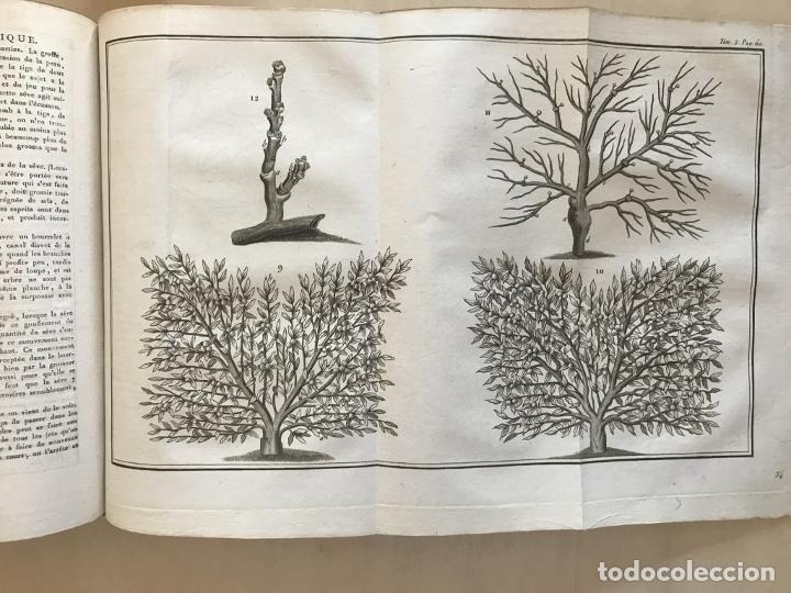 Libros antiguos: LA NOUVELLE MAISON RUSTIQUE ..Tomo II, 1798. J-F- Bastien. Posee 18 grabados. - Foto 18 - 198405088