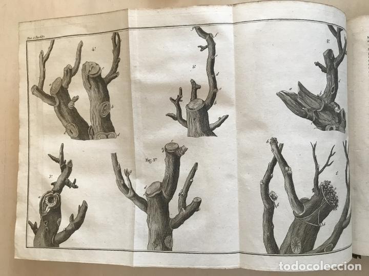 Libros antiguos: LA NOUVELLE MAISON RUSTIQUE ..Tomo II, 1798. J-F- Bastien. Posee 18 grabados. - Foto 20 - 198405088