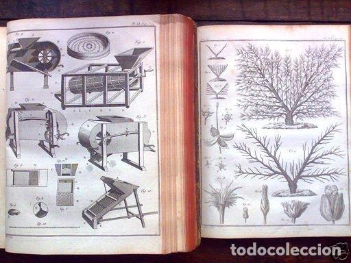 Libros antiguos: COURS COMPLET DAGRICULTURE...Tomo II, 1785. F. Rozier. Posee 27 grabados - Foto 9 - 198412122