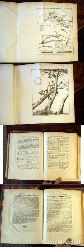 Libros antiguos: De l exploitation des bois, ou moyens..., Tomo I y II , 1764. Duhamel du Monceau. Posee 36 grabados - Foto 5 - 198416221