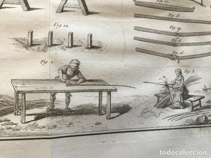 Libros antiguos: De l exploitation des bois, ou moyens..., Tomo I y II , 1764. Duhamel du Monceau. Posee 36 grabados - Foto 21 - 198416221