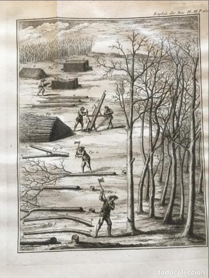 Libros antiguos: De l exploitation des bois, ou moyens..., Tomo I y II , 1764. Duhamel du Monceau. Posee 36 grabados - Foto 22 - 198416221