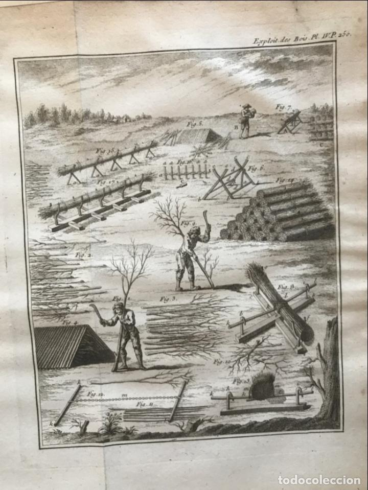 Libros antiguos: De l exploitation des bois, ou moyens..., Tomo I y II , 1764. Duhamel du Monceau. Posee 36 grabados - Foto 23 - 198416221