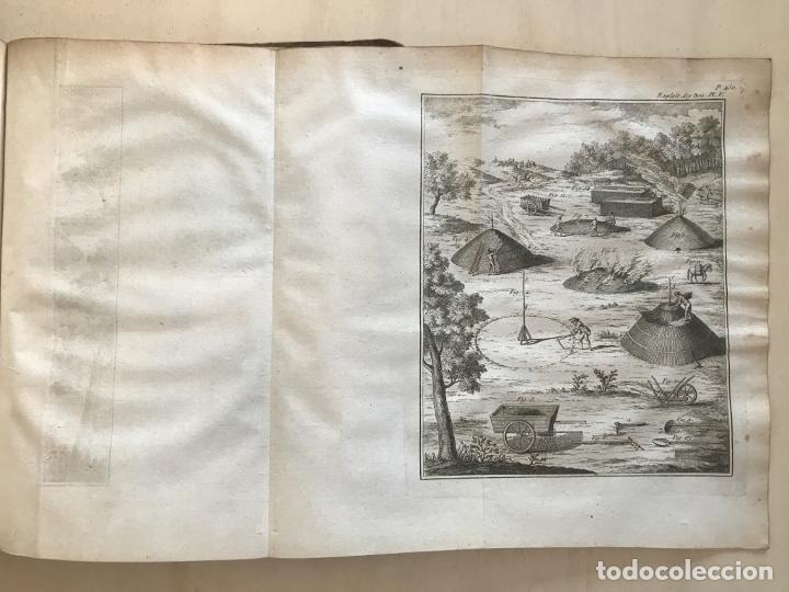 Libros antiguos: De l exploitation des bois, ou moyens..., Tomo I y II , 1764. Duhamel du Monceau. Posee 36 grabados - Foto 24 - 198416221