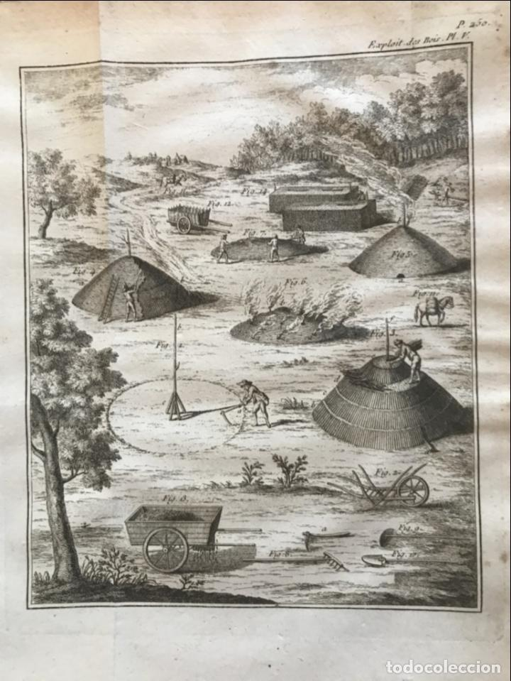 Libros antiguos: De l exploitation des bois, ou moyens..., Tomo I y II , 1764. Duhamel du Monceau. Posee 36 grabados - Foto 25 - 198416221
