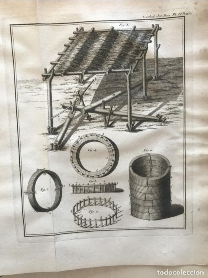 Libros antiguos: De l exploitation des bois, ou moyens..., Tomo I y II , 1764. Duhamel du Monceau. Posee 36 grabados - Foto 26 - 198416221
