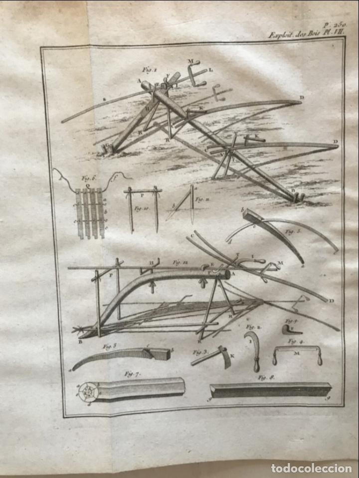 Libros antiguos: De l exploitation des bois, ou moyens..., Tomo I y II , 1764. Duhamel du Monceau. Posee 36 grabados - Foto 27 - 198416221