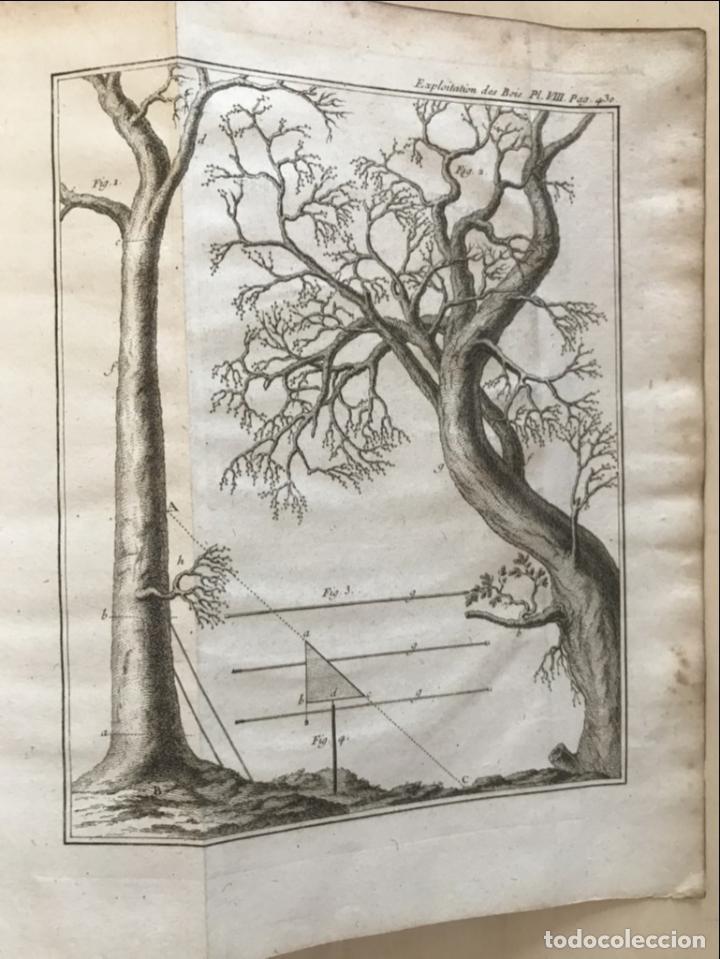 Libros antiguos: De l exploitation des bois, ou moyens..., Tomo I y II , 1764. Duhamel du Monceau. Posee 36 grabados - Foto 28 - 198416221