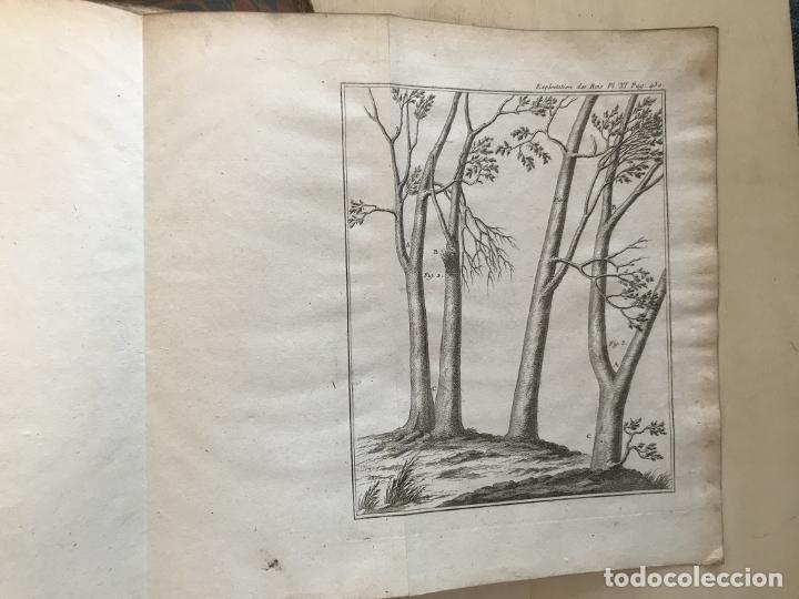 Libros antiguos: De l exploitation des bois, ou moyens..., Tomo I y II , 1764. Duhamel du Monceau. Posee 36 grabados - Foto 31 - 198416221