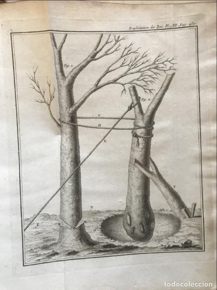 Libros antiguos: De l exploitation des bois, ou moyens..., Tomo I y II , 1764. Duhamel du Monceau. Posee 36 grabados - Foto 32 - 198416221