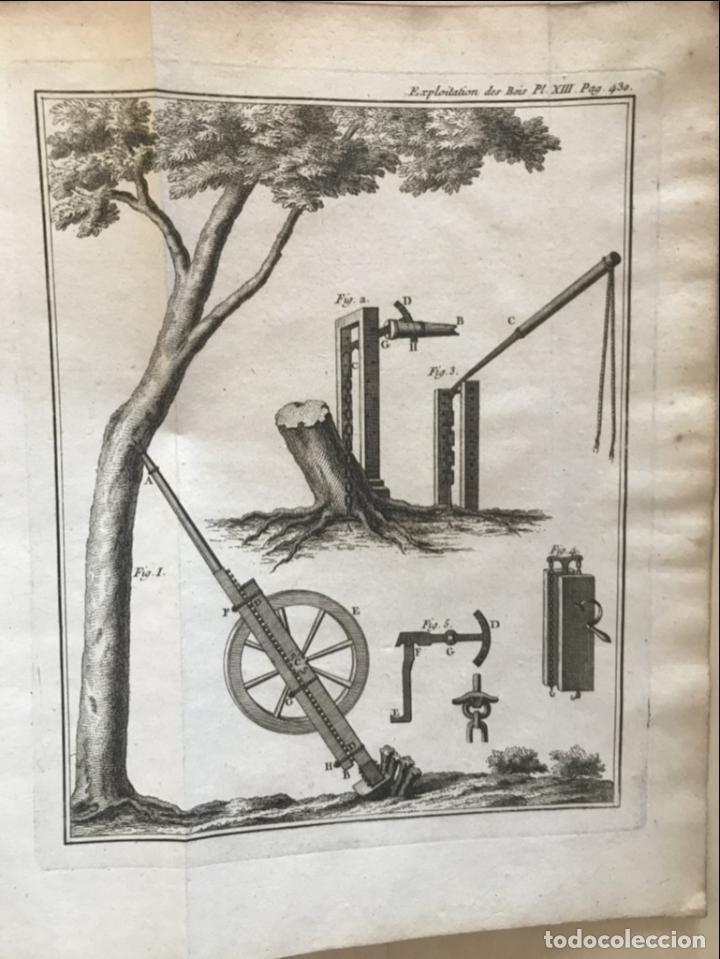Libros antiguos: De l exploitation des bois, ou moyens..., Tomo I y II , 1764. Duhamel du Monceau. Posee 36 grabados - Foto 33 - 198416221