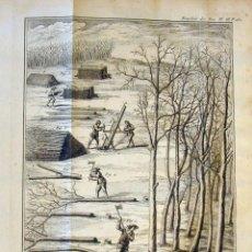 Libros antiguos: DE L EXPLOITATION DES BOIS, OU MOYENS..., TOMO I Y II , 1764. DUHAMEL DU MONCEAU. POSEE 36 GRABADOS. Lote 198416221