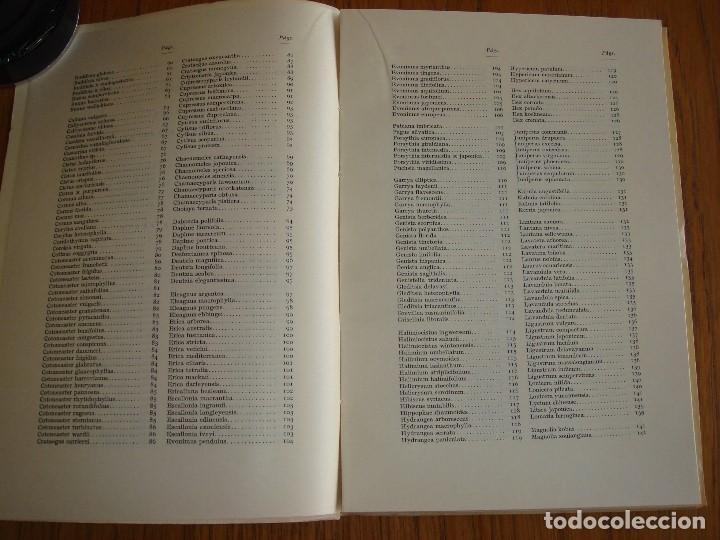 Libros antiguos: SETOS: CLASES Y ESPECIES UTILIZABLES. 1964. - Foto 4 - 198559833