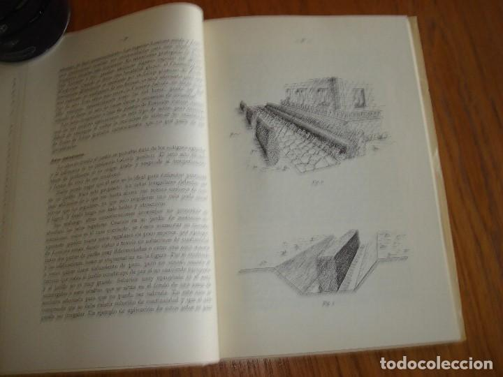 Libros antiguos: SETOS: CLASES Y ESPECIES UTILIZABLES. 1964. - Foto 7 - 198559833