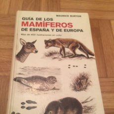 Libros antiguos: GUÍA DE LOS MAMÍFEROS DE ESPAÑA Y DE EUROPA, DE MAURICE BURTON. ED. OMEGA,BARCELONA 1978.. Lote 199347098
