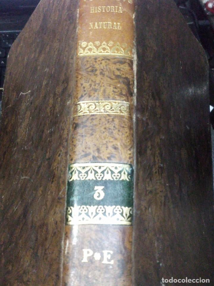 ~~~~ ELEMENTOS DE HISTORIA NATURAL, MINERALOGIA, MILNE EDWARDS.1846 IMPRENTA JOAQUIN VERDAGUER ~~~~ (Libros Antiguos, Raros y Curiosos - Ciencias, Manuales y Oficios - Bilogía y Botánica)