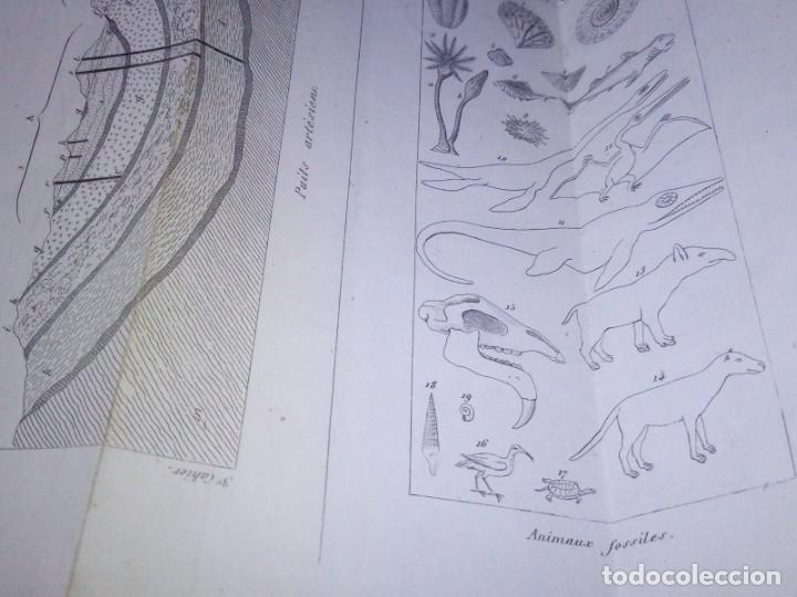Libros antiguos: ~~~~ ELEMENTOS DE HISTORIA NATURAL, MINERALOGIA, MILNE EDWARDS.1846 IMPRENTA JOAQUIN VERDAGUER ~~~~ - Foto 8 - 199520865