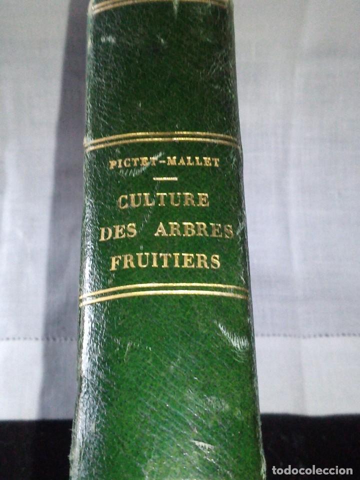 ~~~~ TRAITE DE LA CULTURE DES ARBRES FRUITIERS, FORSYTH JARDINERO REAL DE SU MAJESTAD BRITANICA ~~~~ (Libros Antiguos, Raros y Curiosos - Ciencias, Manuales y Oficios - Bilogía y Botánica)