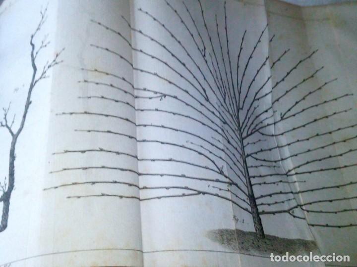 Libros antiguos: ~~~~ TRAITE DE LA CULTURE DES ARBRES FRUITIERS, FORSYTH JARDINERO REAL DE SU MAJESTAD BRITANICA ~~~~ - Foto 5 - 199523421