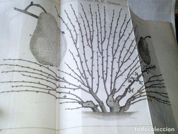 Libros antiguos: ~~~~ TRAITE DE LA CULTURE DES ARBRES FRUITIERS, FORSYTH JARDINERO REAL DE SU MAJESTAD BRITANICA ~~~~ - Foto 7 - 199523421