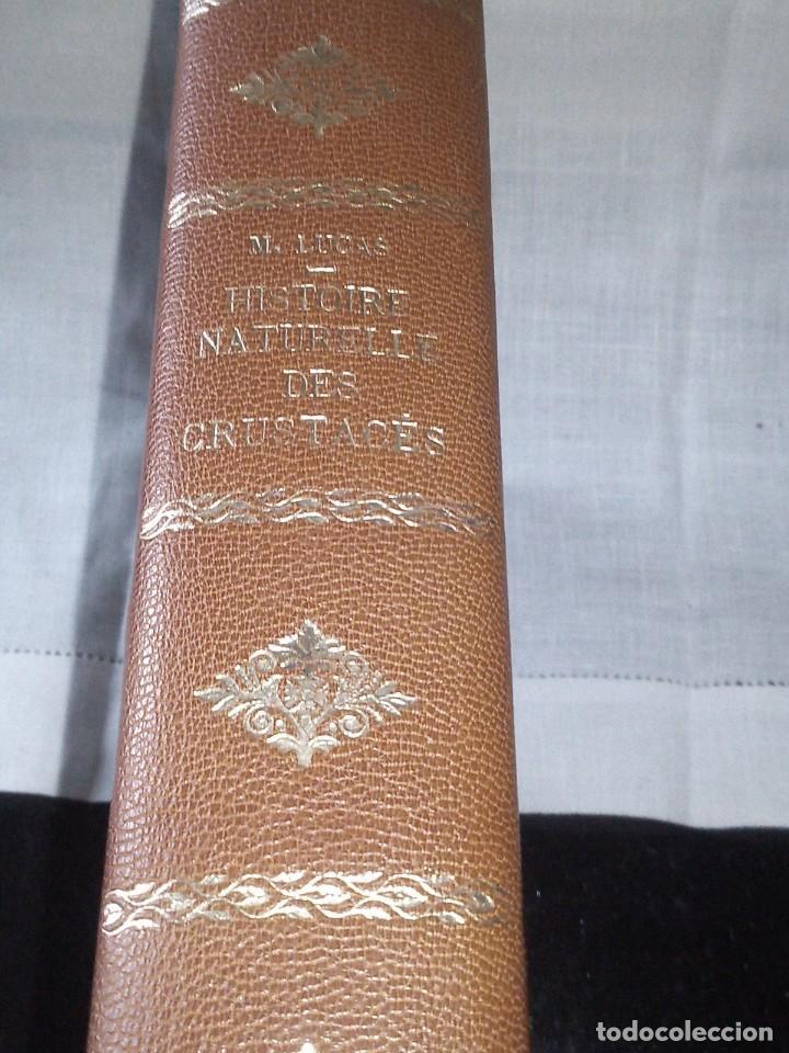 ~~~~ HISTOIRE NATURELLE DES CRUSTACÉS, DES ARACNIDES ET DES MYRIAPODES PAR M. LUCAS ~~~~ (Libros Antiguos, Raros y Curiosos - Ciencias, Manuales y Oficios - Bilogía y Botánica)
