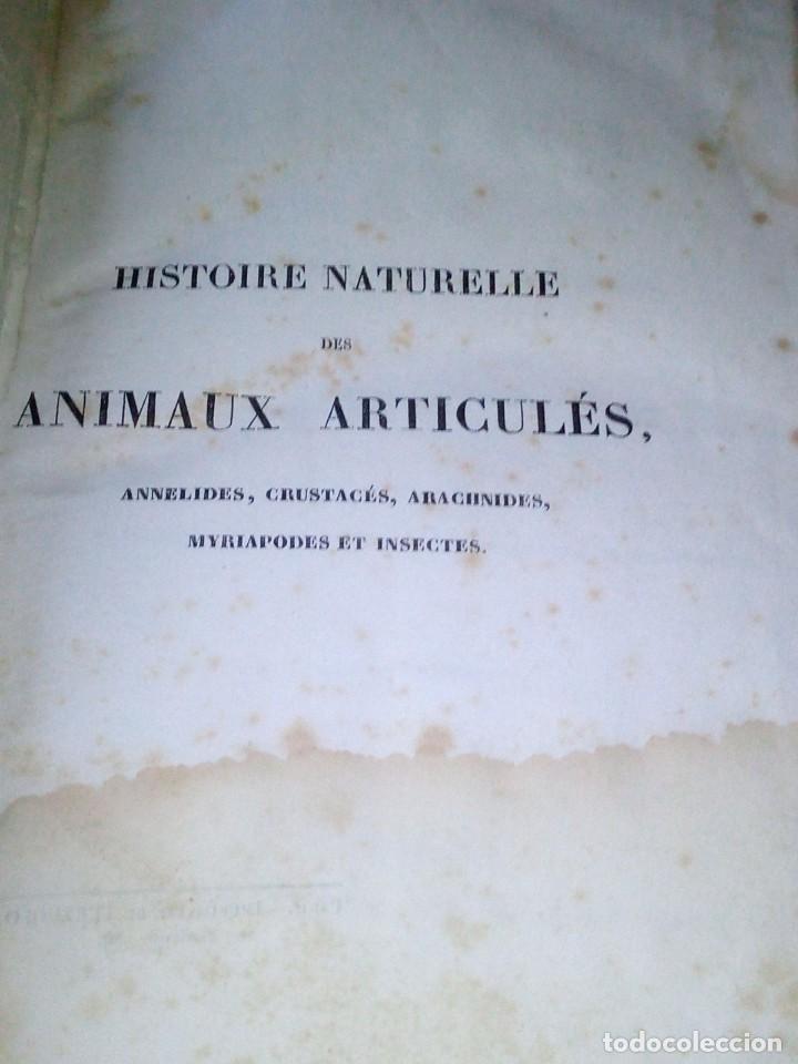 Libros antiguos: ~~~~ HISTOIRE NATURELLE DES CRUSTACÉS, DES ARACNIDES ET DES MYRIAPODES PAR M. LUCAS ~~~~ - Foto 3 - 199524517
