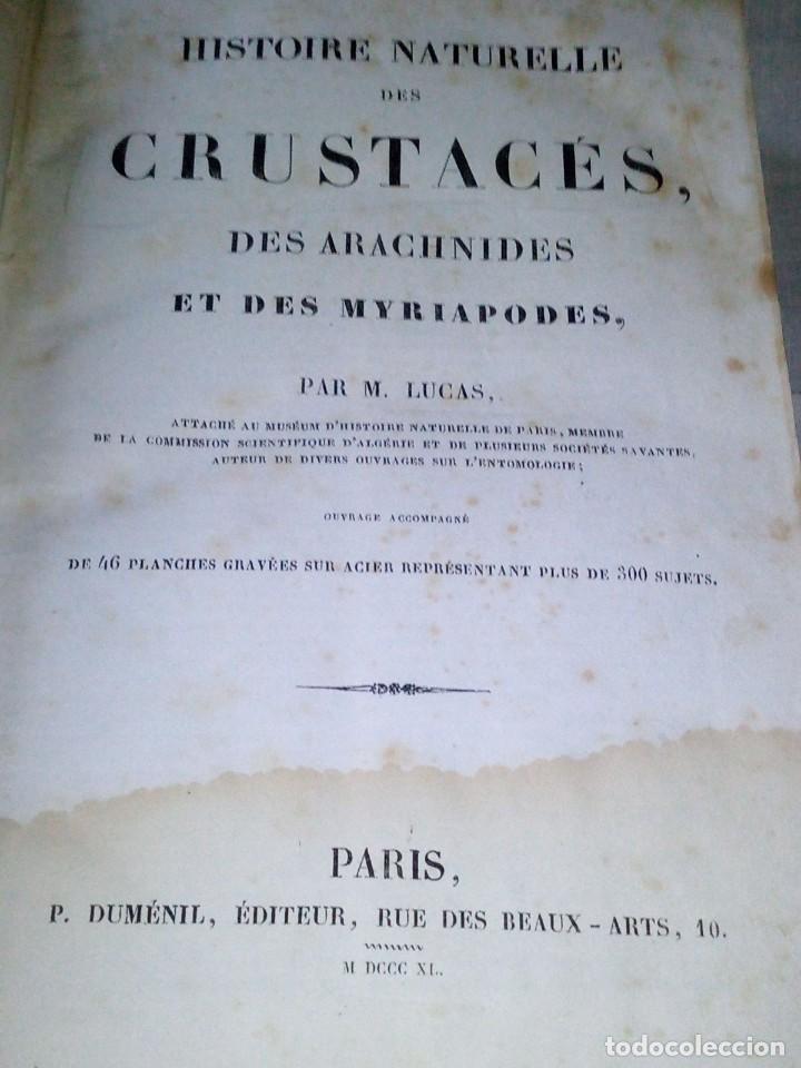 Libros antiguos: ~~~~ HISTOIRE NATURELLE DES CRUSTACÉS, DES ARACNIDES ET DES MYRIAPODES PAR M. LUCAS ~~~~ - Foto 4 - 199524517