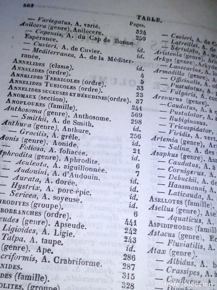 Libros antiguos: ~~~~ HISTOIRE NATURELLE DES CRUSTACÉS, DES ARACNIDES ET DES MYRIAPODES PAR M. LUCAS ~~~~ - Foto 6 - 199524517