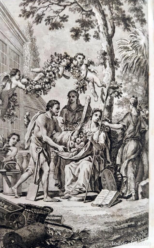 Libros antiguos: AÑO 1754: DICCIONARIO DE LOS JARDINEROS: ÁRBOLES, FLORES, PLANTAS...LONDRES. - Foto 5 - 200296106