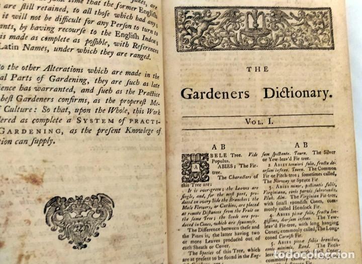 Libros antiguos: AÑO 1754: DICCIONARIO DE LOS JARDINEROS: ÁRBOLES, FLORES, PLANTAS...LONDRES. - Foto 9 - 200296106