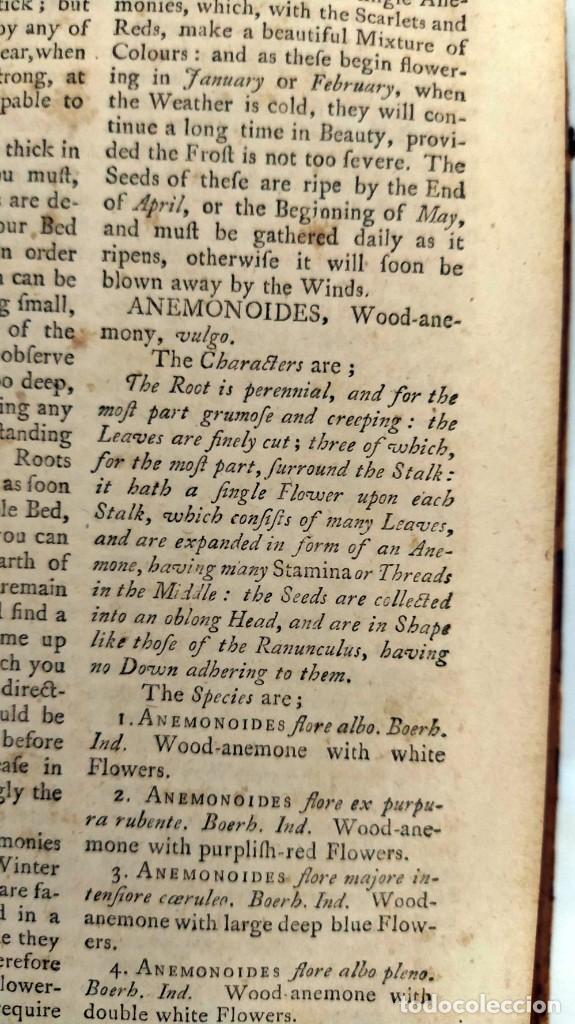 Libros antiguos: AÑO 1754: DICCIONARIO DE LOS JARDINEROS: ÁRBOLES, FLORES, PLANTAS...LONDRES. - Foto 10 - 200296106