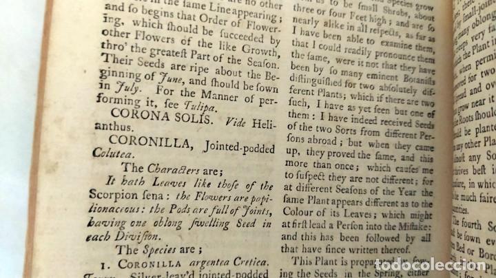 Libros antiguos: AÑO 1754: DICCIONARIO DE LOS JARDINEROS: ÁRBOLES, FLORES, PLANTAS...LONDRES. - Foto 11 - 200296106