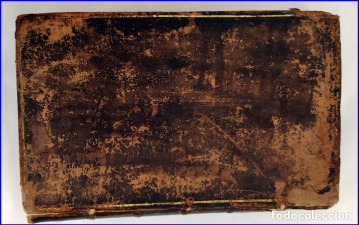 Libros antiguos: AÑO 1754: DICCIONARIO DE LOS JARDINEROS: ÁRBOLES, FLORES, PLANTAS...LONDRES. - Foto 12 - 200296106