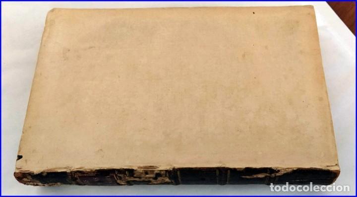 Libros antiguos: AÑO 1754: DICCIONARIO DE LOS JARDINEROS: ÁRBOLES, FLORES, PLANTAS...LONDRES. - Foto 13 - 200296106