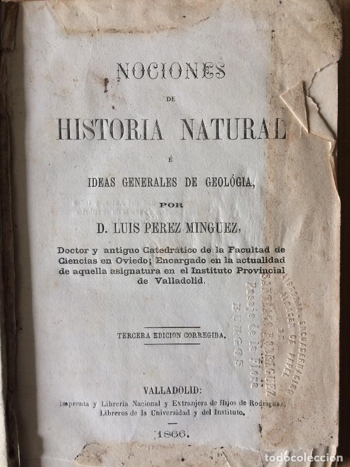 LUIS PEREZ MINGUEZ (GEOLOGIA 1866) (Libros Antiguos, Raros y Curiosos - Ciencias, Manuales y Oficios - Paleontología y Geología)