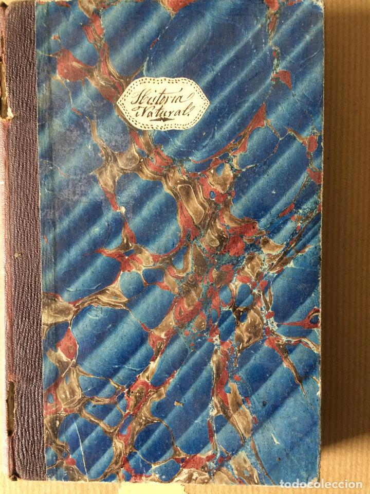 Libros antiguos: LUIS PEREZ MINGUEZ (GEOLOGIA 1866) - Foto 2 - 201327796